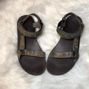 Snake Skin Teva Sandals
